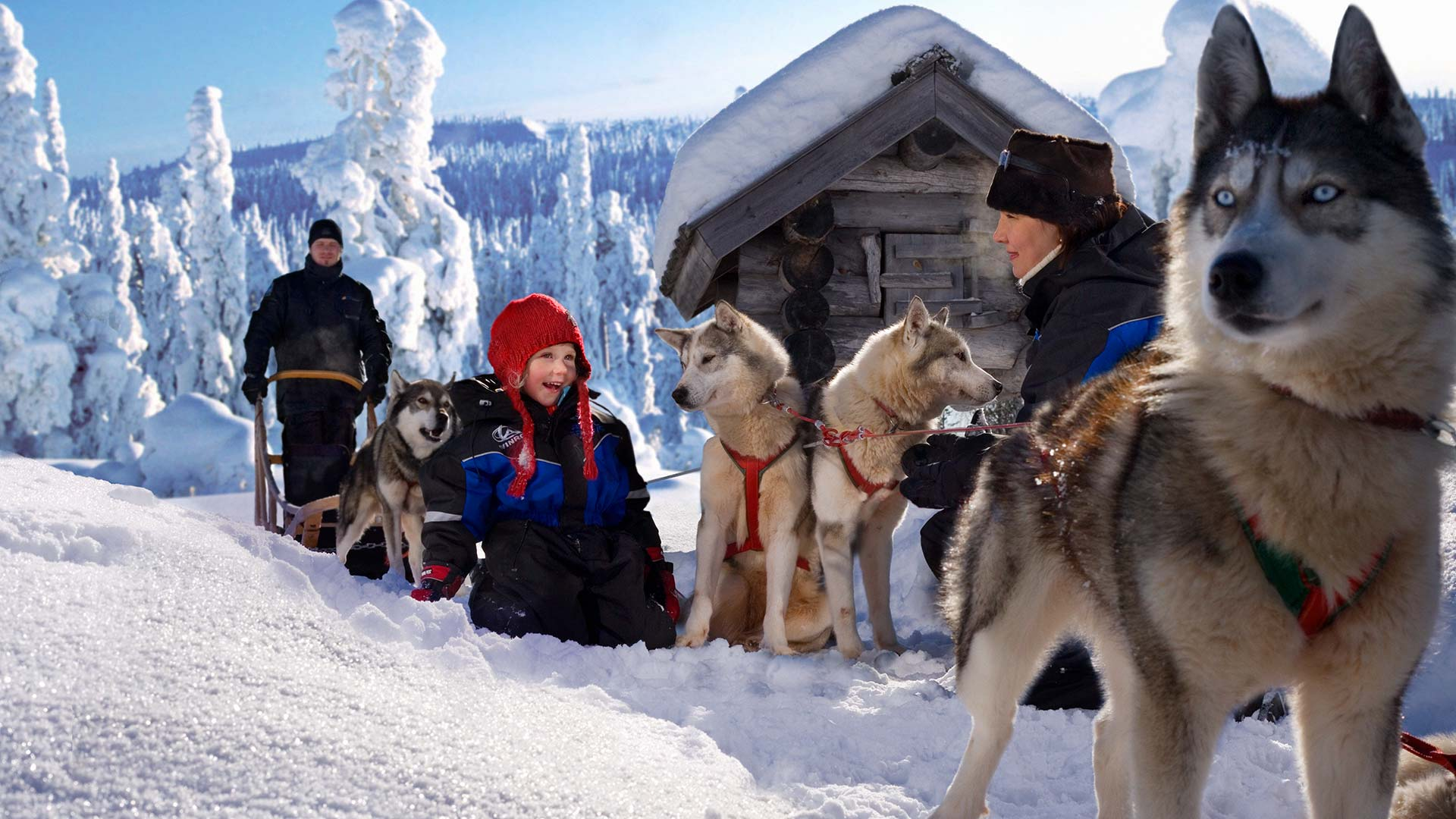 Lapland Family Packages Family Friendly Tours With