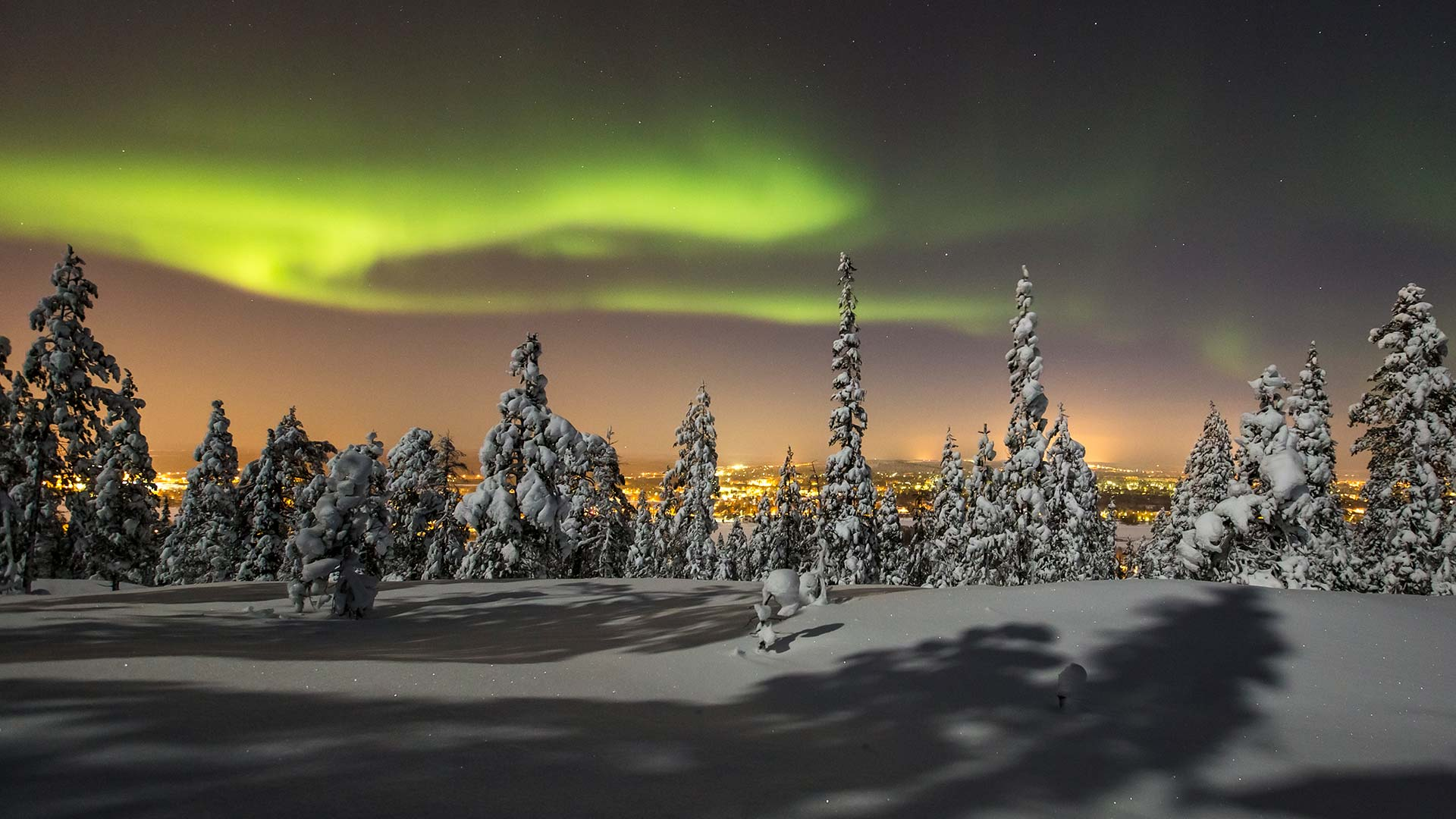 Northern Lights Christmas Tree