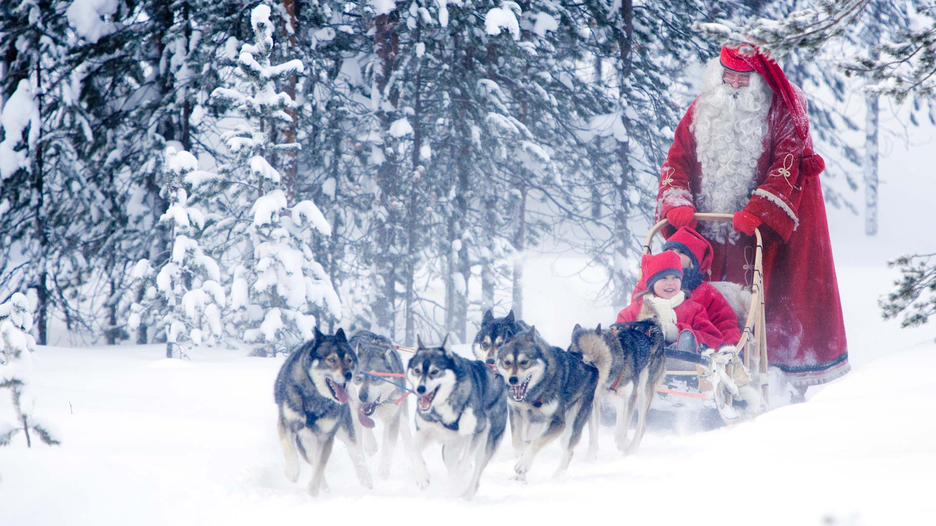 santa claus tours in lapland visit father christmas in lapland